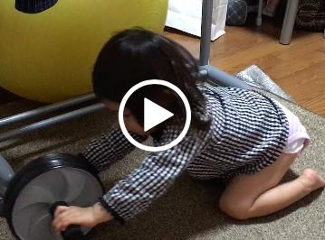 2歳児が腹筋ローラー?
